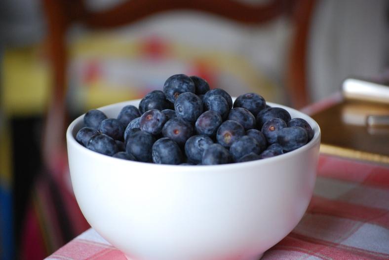 Blueberries for the tart
